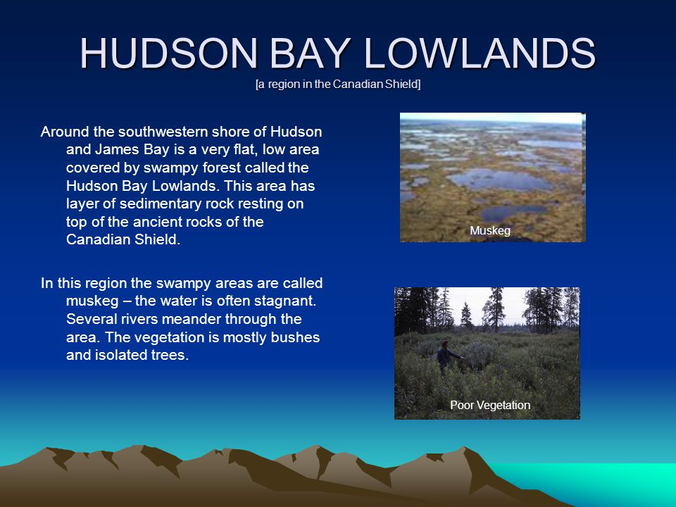 HUDSON BAY LOWLANDS [a region in the Canadian Shield]